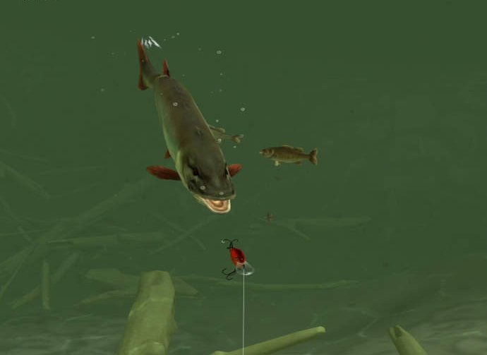 Rapala daily catch cheats tips strategy guide to catch for Fish table cheat app