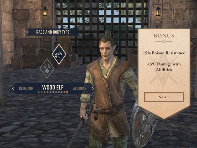 Elder Scrolls Blades: Best Class / Race in the Game & Guide to