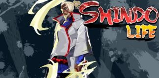 Shindo Life Working codes December 2020
