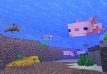 axolotls minecraft guide