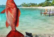 fishing clash pvp guide