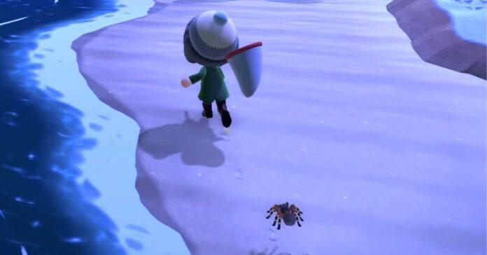 tarantula in animal crossing new horizons