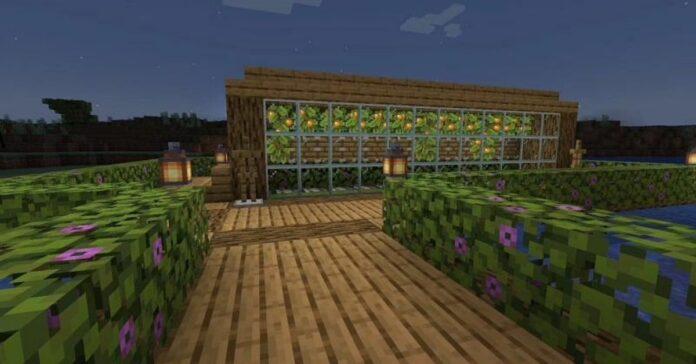 How to Grow Glow Berries in Minecraft