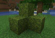 Moss Block in Minecraft