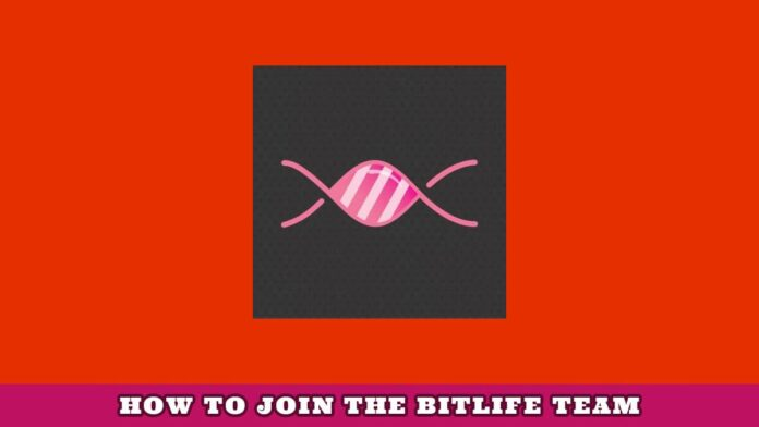 How to join BitLife Team
